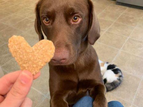 Sage loves treats