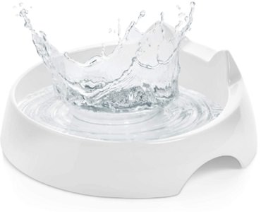 CatGuru Cat Food & Water Bowl