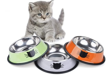 Legendog 3PCS Pet Bowl – Stainless Steel Cat Bowl