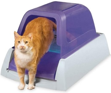 PetSafe ScoopFree Automatic Self Cleaning Hooded Cat Litter Box – Ultra/2nd Generation