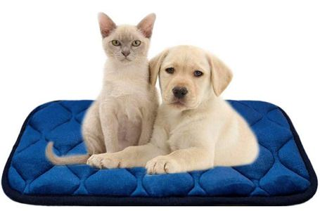 Furrybaby Soft Crate Mat for cats