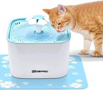 Pet Fountain Cat Water Dispenser