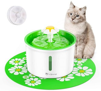 isYoung Cat Fountain